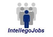 Pilot Jobs - Logo Image